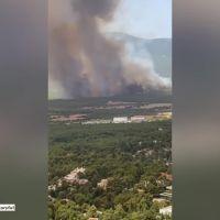 Ogromne pożary w Grecji. Mieszkańcy Aten mają nie wychodzić z domów