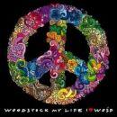 Przystanek Woodstock 2013 - transmisja internetowa. Gdzie oglądać na żywo, online? [VIDEO]